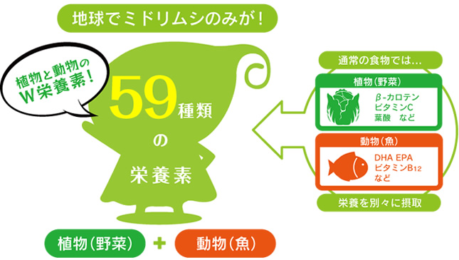 59種類の栄養素